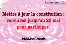 majtaconstit.png